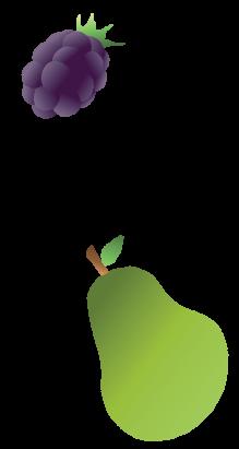 fruitrechtsV2
